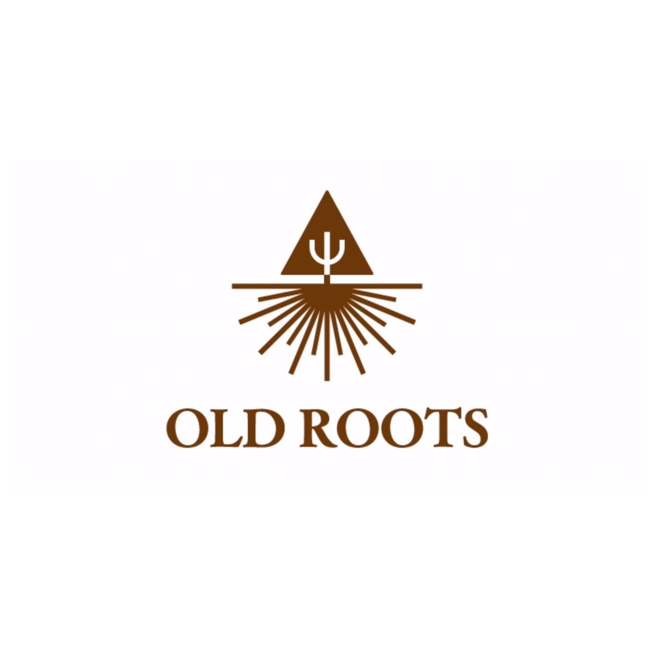 オーディション 映像制作団体がプロデュース 世界に通用する新規ユニット募集 主催:OLD ROOTS、カテゴリ:アイドル(本格派)
