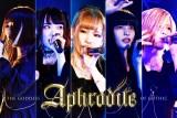Aphrodite追加メンバー及び新規ユニットメンバー募集
